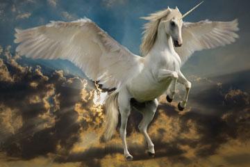 soñar con unicornio